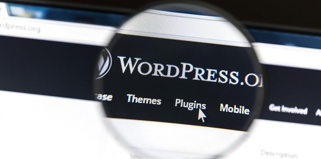 WordPress Entwicklung Batunet